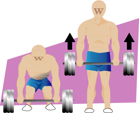 Deadlift_illustration.jpg