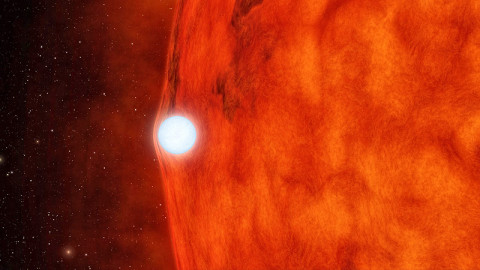 NASAs-Kepler-space-telescope-discovers-White-Dwarf-bending-light-of-nearby-Star-480x270.jpg