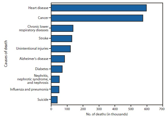 Death Statistics by Cause Causes Car Accident Statistics